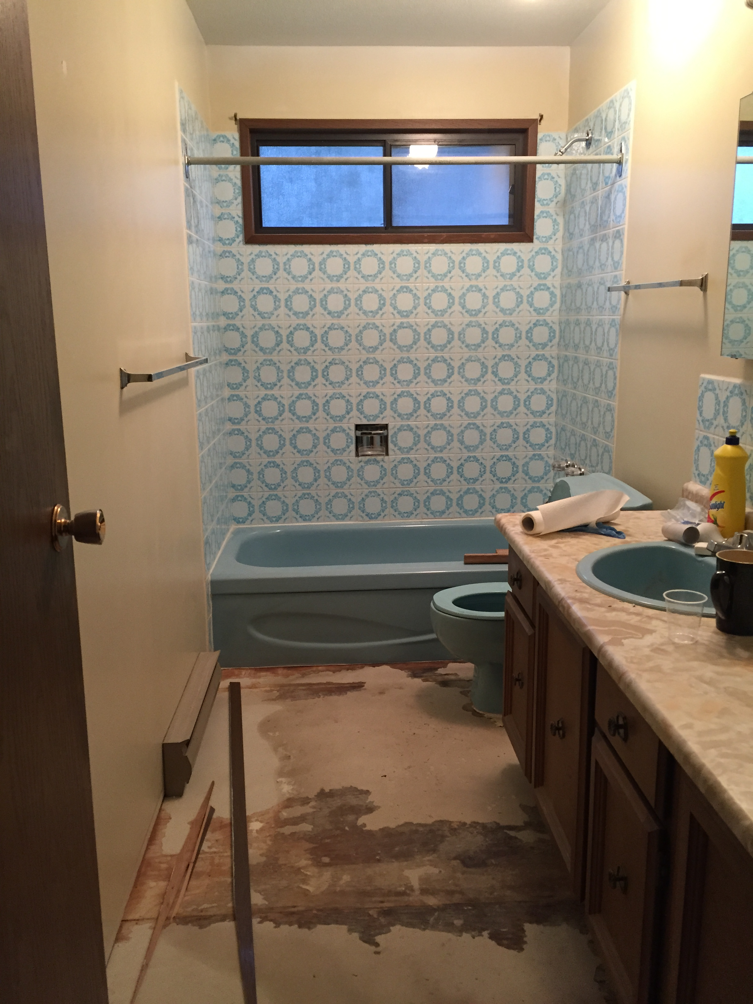 BEFORE - bathroom reno
