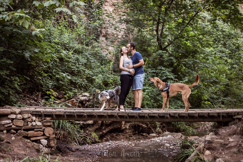 sesión de fotos de embarazo con perros en el bosque, fotografía natural de familias en Barcelona - Mon Amour Family Photography by Mònica Vidal