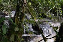 Cascades en amont de la chute