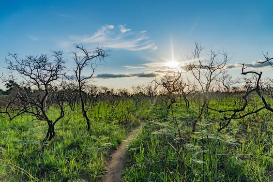 Coucher de soleil près de Ngoyi