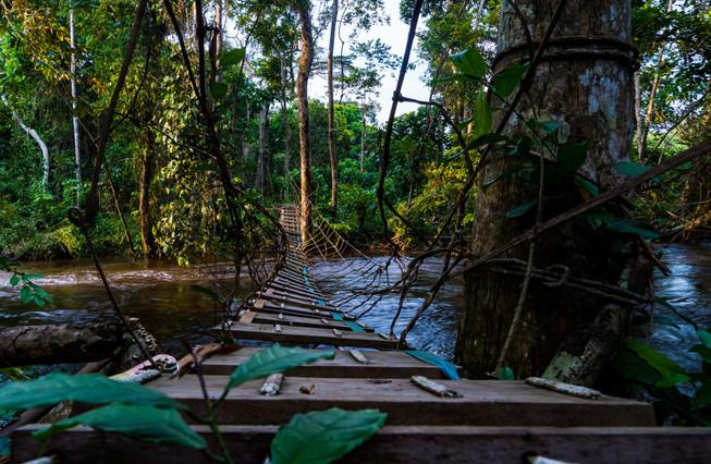 Pont artisanal sur la Tsatsala