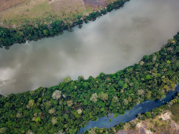Rivière bleue vs fleuve Niari