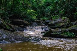 Rivière Mombo