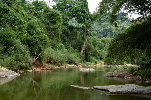 La rivière Loukoula