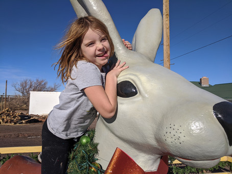 Super bunny! - in Arizona they say they have a 'jackalope' - a bunny with horns?