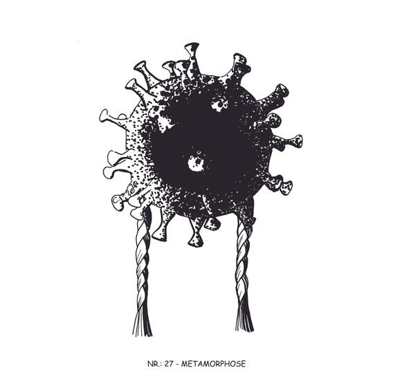 27 Metamorphose