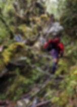 tramper climb_2.jpg
