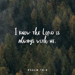 PSALM168.jpg
