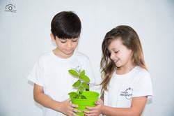 ecológica