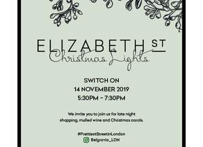 14 November - Elizabeth Street Christmas Lights