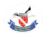Becs_Fins_logo_pin's.png