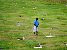 Legislators oppose vets cemetery regulations