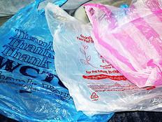 Senator Biscoe Lee's plastic bag ban passes Legislature