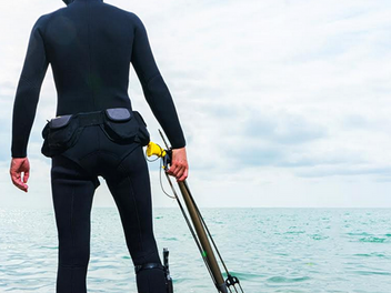 Making the case for a scuba fishing ban