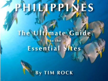 Diving the Philippines with Guam's Tim Rock