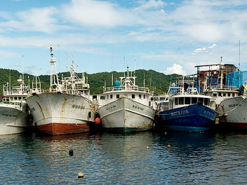 Japan irked by US tuna catch increase proposal