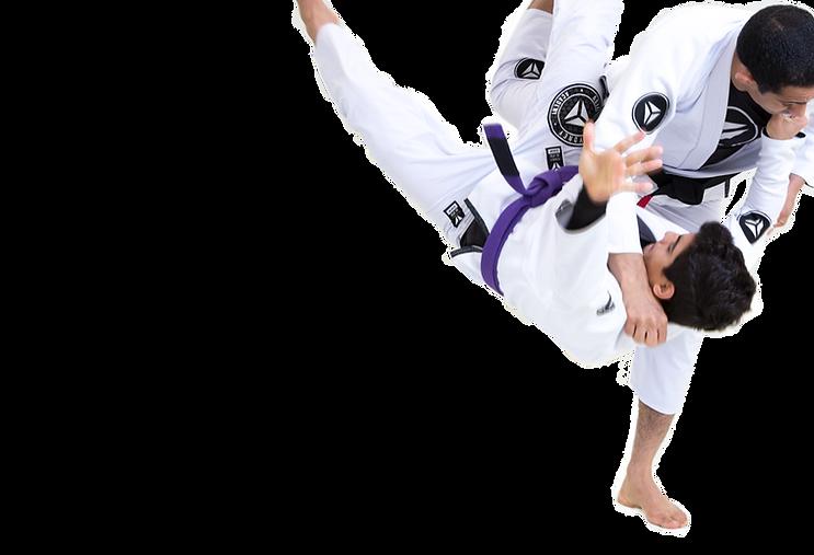 Sydney Jiu Jitsu Academy Fundamentals