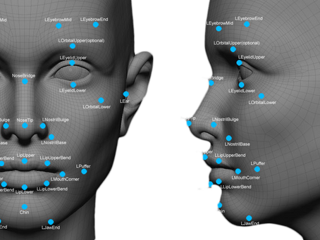 Shopping Malls Are Using Facial Recognition, License Plate Scanning to Improve Safety