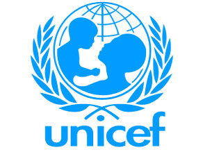 Security Officer (NO-2), Cairo, Egypt, Egyptians Only - Unicef
