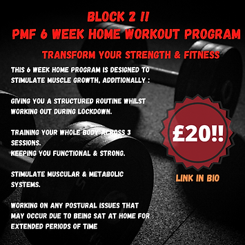 PMF 6 WEEK HOME WORKOUT PROGRAM.png