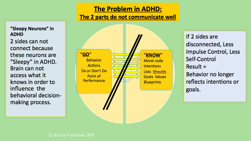 The Problem in ADHD