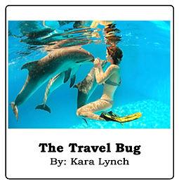 The Travel Bug.jpg