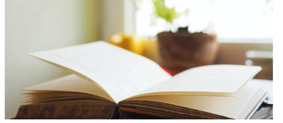 Where's My Quarantine Handbook?  Featured on the Jessica Simpson Blog