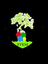 stem  revised.png