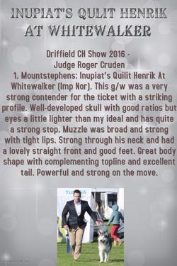 driffield 2016