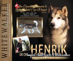 WHITWALKER-HENRIK-2020