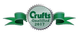 crufts 17_edited-1