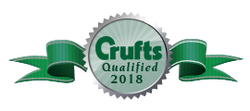 crufts 18_edited-1