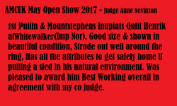 AMCUK May open show 2017