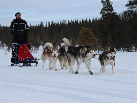 Sweden holiday to Ljungdalen