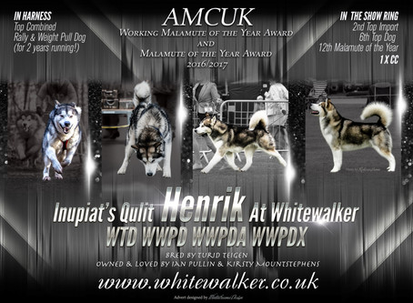 AMCUK WMOYA & MOYA results for Whitewalker