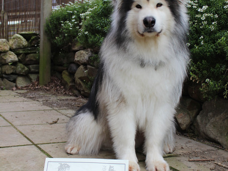 Lincoln receives his certificate in the post for his WWPDA!!!!