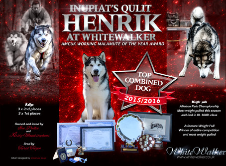 AMCUK Working Malamute of the Year awards……