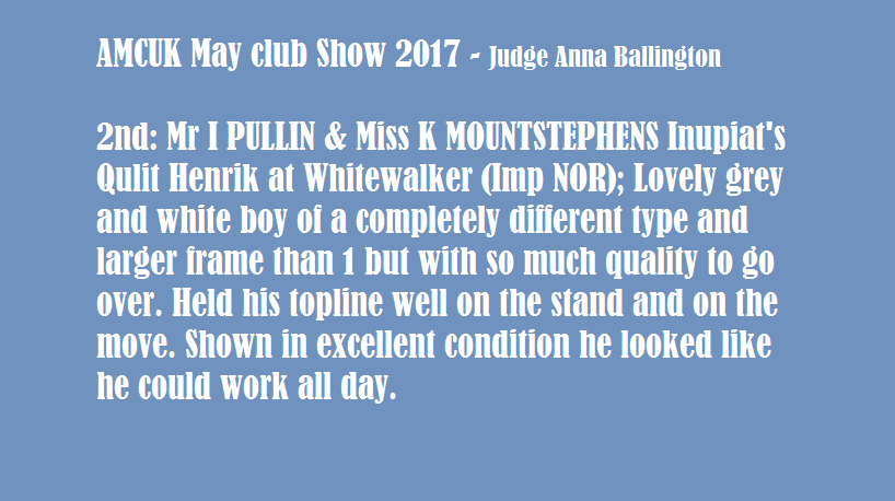 may club show 2017