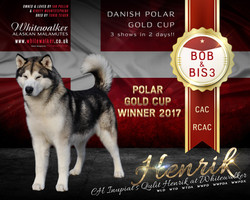 Danish Gold Cup 2017