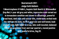 Bournemouth 2017