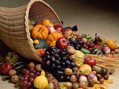 Bountiful-Harvest.jpg