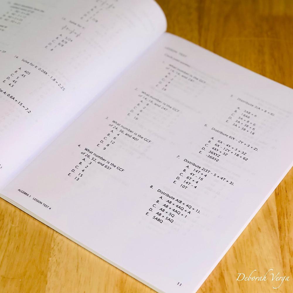Math U See Algebra 1 Test Book