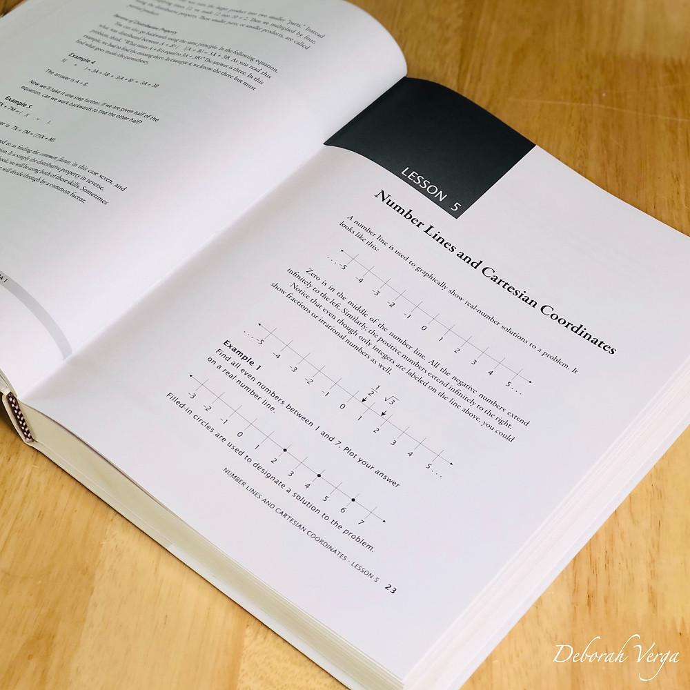 Math U See Algebra 1 Instructor's Manual