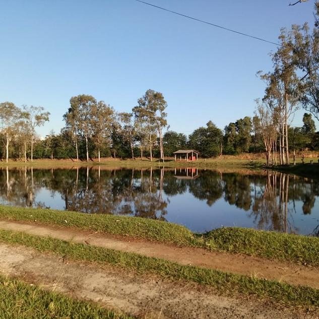 Lago Pesque Pague