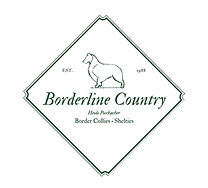 Borderline Country Logo.png