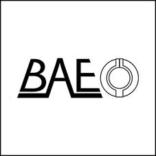 bae-1.png