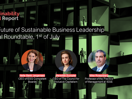 Roundtable synopsis of the The Future of Sustainable Business Leadership
