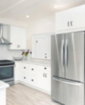 Home refrigerator repair service