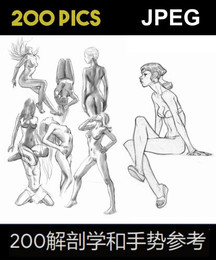 200 ANATOMY AND GESTURE REFERENCES