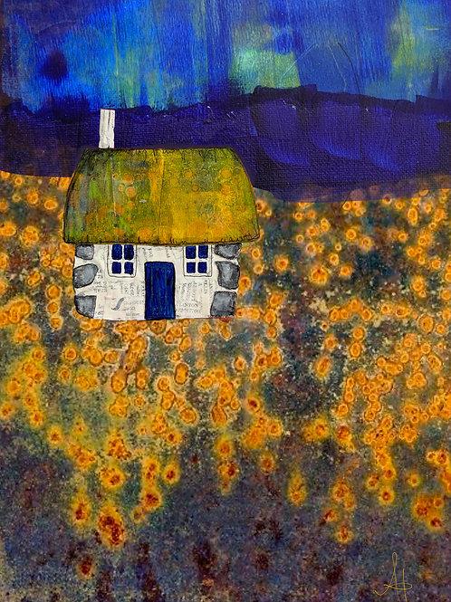 Scottish Bothy (yellow flowers)